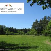 Waldperlach Villenduett